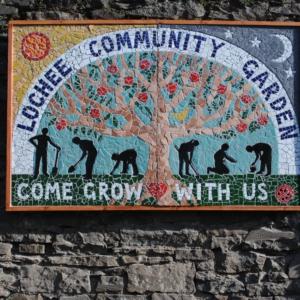 Dundee Urban Orchard 5