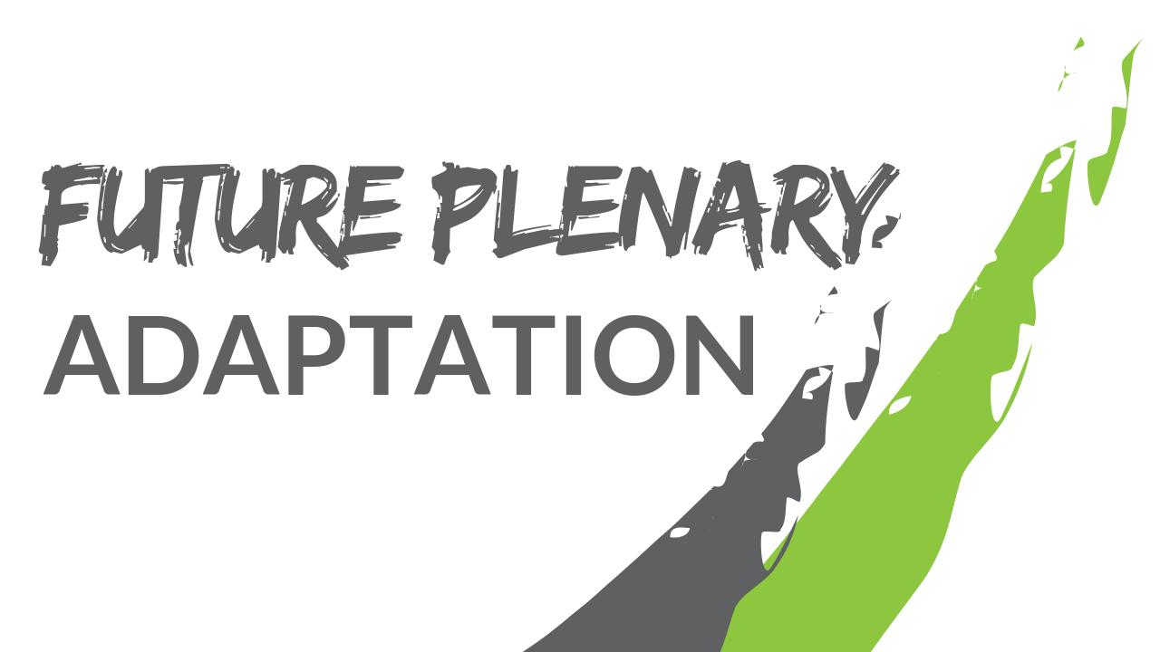 Future Plenary: Adaptation  - image