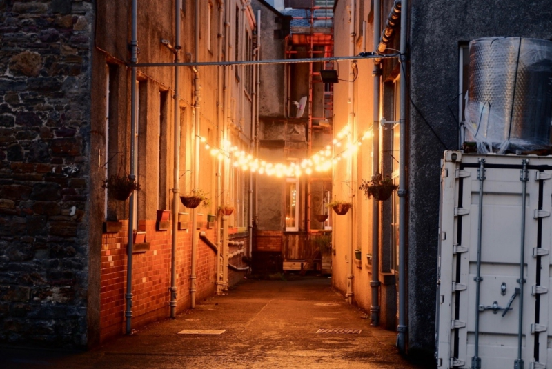Case Study: The Dr Gavin Wallace Fellowship and Alternative Pathways to Sustainability at Summerhall 3