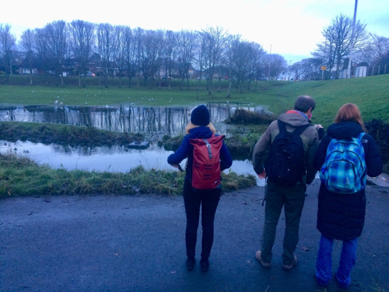Project team exploring Stronsay Park and the Den Burn