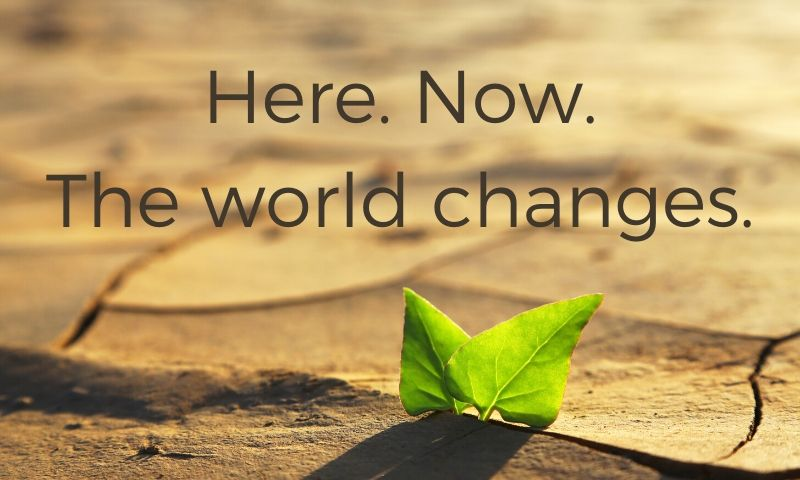 Guest blog: Here. Now. The world changes.