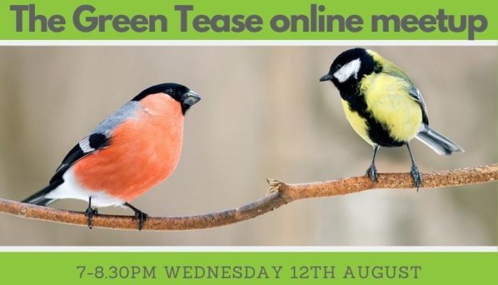 Green Tease Online Meetups 2