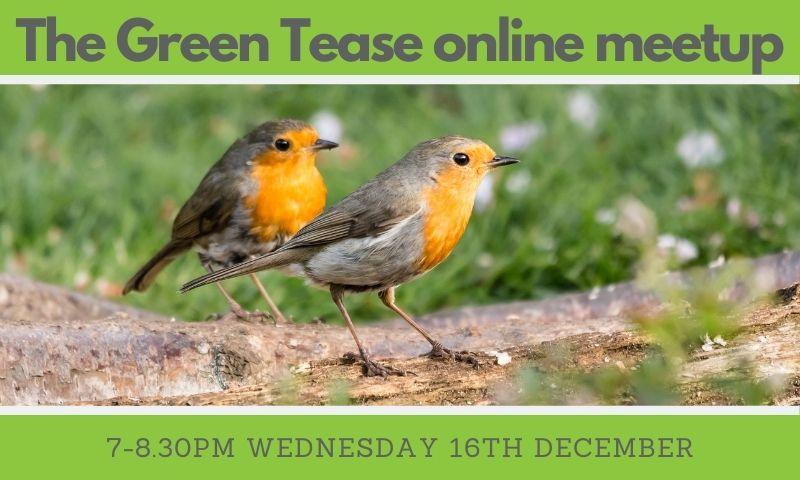 Green Tease Online Meetups