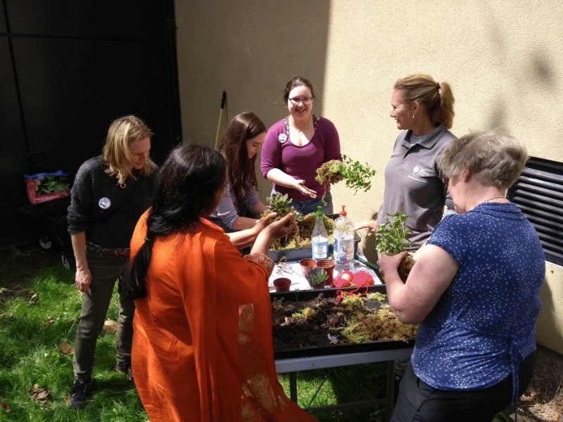 Case Study: Glasgow Women's Library on Retrofitting, Community Gardening and Sharing Green Learnings
